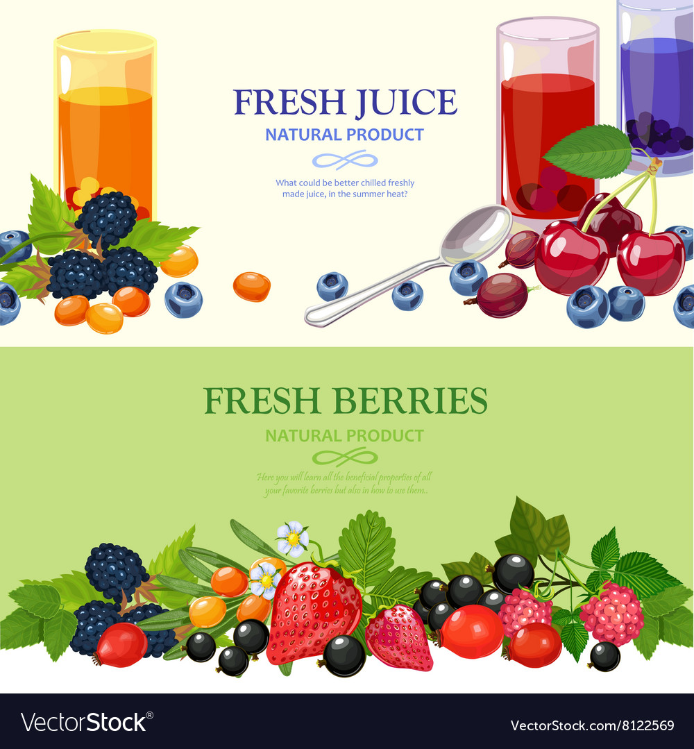 Fresh berries 2 flat banners set vector
