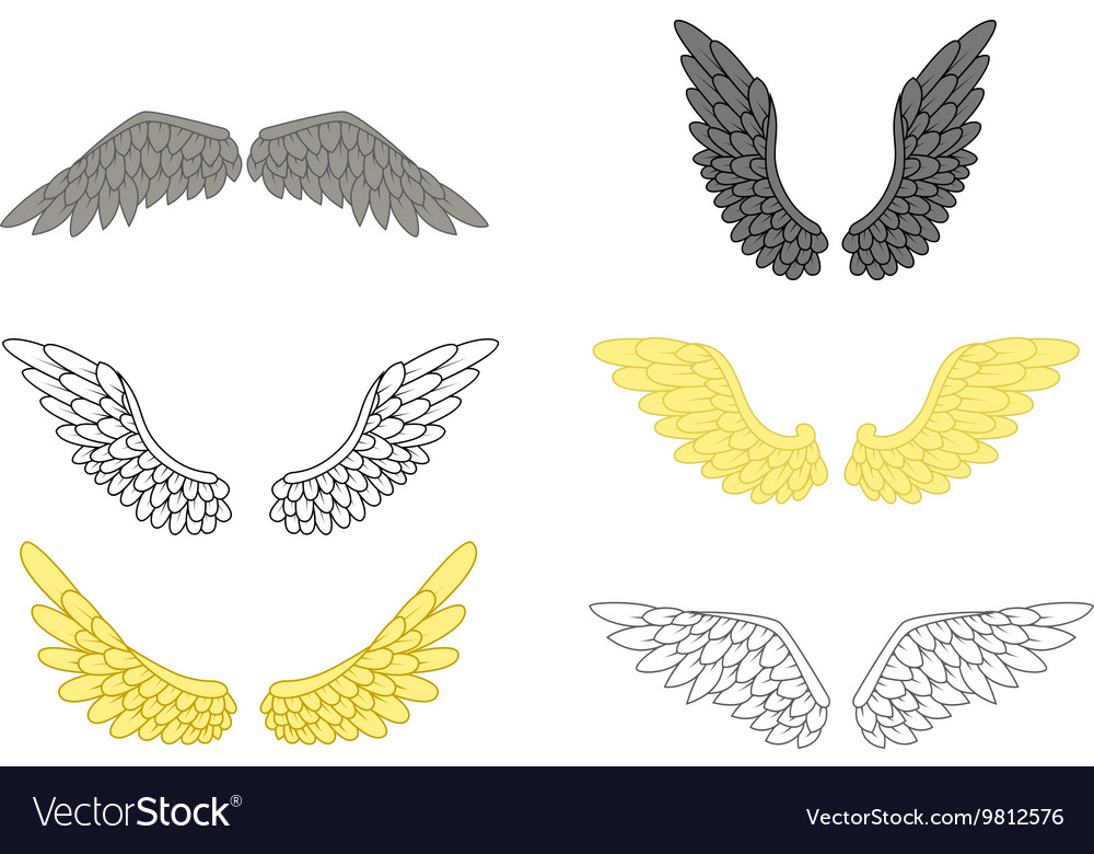 Angel wing set for your design vector