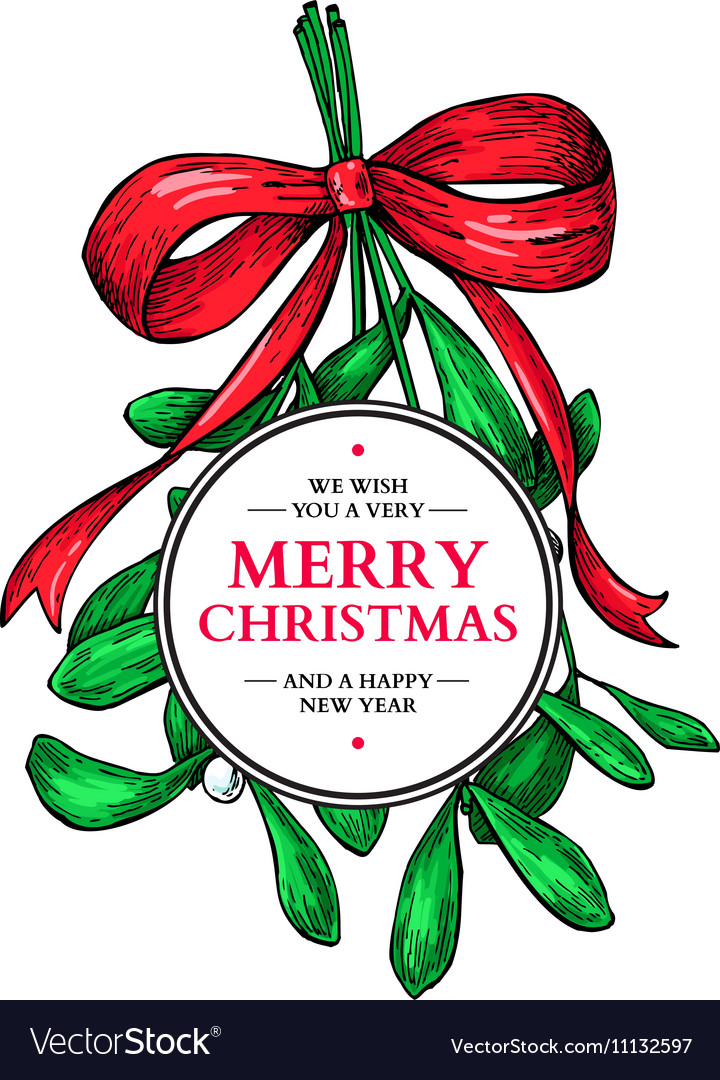 Mistletoe with bow and ribbon christmas card with vector