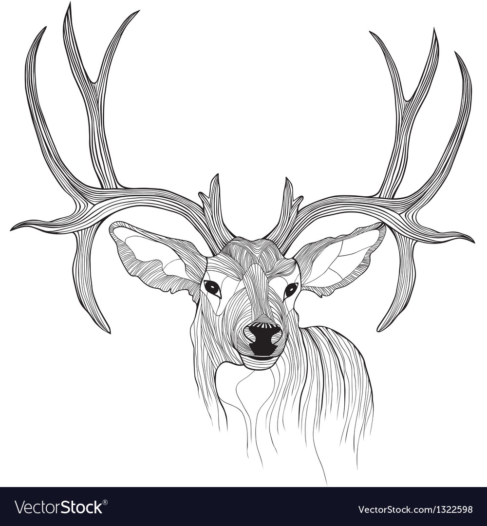 Deer head animal for tshirt sketch tattoo design vector