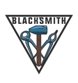 Color vintage Blacksmith emblem vector image