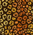 Seamless Pattern Of Leopard Skin vector image