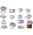 Full Set of Five Hundred Euros Banknotes vector image vector image