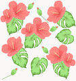 seamless pattern with flowers of hibiscus vector image
