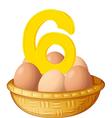 Six eggs vector image