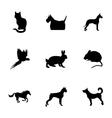 black pet icons set vector image