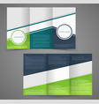 tri-fold business brochure template two-sided vector image