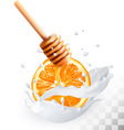Orange and honey in a milk splash on a transparent vector image vector image
