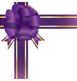 Violet bow isolated vector image vector image