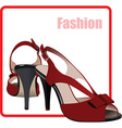 Beauty and fashion background vector image