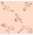 Eagles Sketch pencil Drawing by hand Vintage vector image