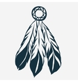 Tribal Feathers dreamcatcher vector image