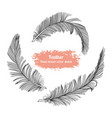 hand drawn set feather sketch style vector image