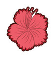 tropical and exotic flower vector image