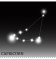 Capricorn Zodiac Sign of the Beautiful Bright vector image