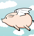 when pigs fly vector image