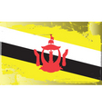 brunei national flag vector image