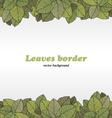 Borders of foliage vector image vector image