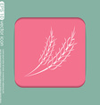 wheat spike ears icon vector image