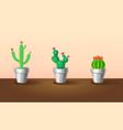 decorative exotic plants set vector image