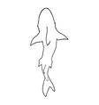 Shark silhouette top view vector image