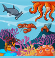 sea animals under the ocean vector image