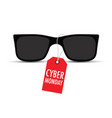 sunglasses with a cyber monday tag vector image