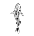 zentangle shark coloring book shark vector image
