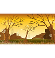 Trees without leaves at the forest vector image