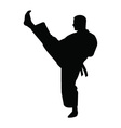 Karate trainer silhouette vector image