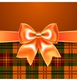Background with ribbon bow vector image vector image