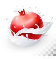 Pomegranate or garnet in a milk splash on a vector image