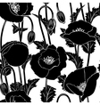 Seamless from poppies vector image vector image