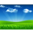 Nature summer background with green grass vector image