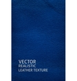Blue leather vertical background vector image