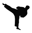 Karate master silhouette vector image