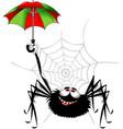 spider and umbrella vector image