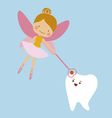 Tooth fairy and tooth mascot vector image