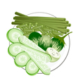 Green Eggplants Cucumbers and Chinese Long Beans vector image vector image