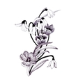 sketched snowdrops flowers on white background vector image