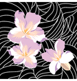 Wallpaper with elegance flowers vector image