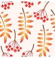 Watercolor seamless rowan vector image