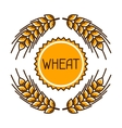 Emblem with wheat Agricultural image natural vector image vector image