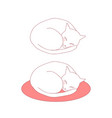 ball cat sleeping on bed vector image