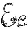 Letter E e vector image