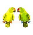 two parrots on white background vector image