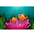 Two fishes above a pink coral vector image vector image