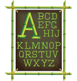 bamboo frame with canvas and stylized alphabet vector image