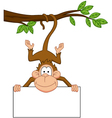 monkey with blank sign vector image