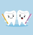 tooth couple vector image